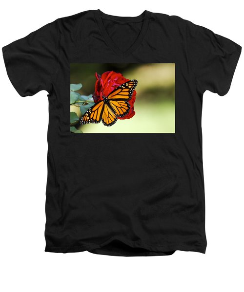 Monarch On Rose Men's V-Neck T-Shirt by Debbie Karnes