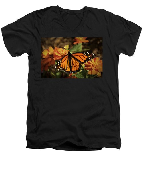 Monarch Spotlight. Men's V-Neck T-Shirt