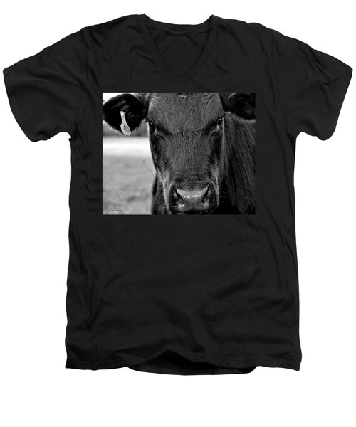 Moo Men's V-Neck T-Shirt