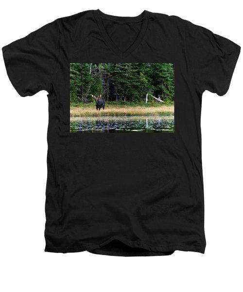 Moose Men's V-Neck T-Shirt by Ulrich Schade