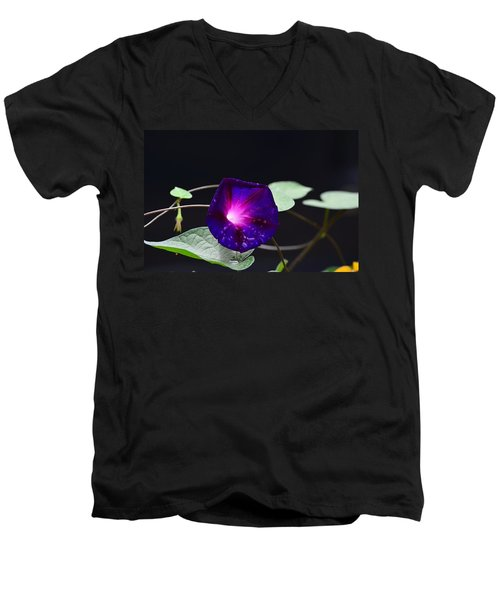 Morning Glory - Grandpa Ott's Men's V-Neck T-Shirt by Kathy Eickenberg