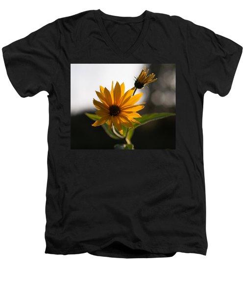 Morning Sunshine Men's V-Neck T-Shirt