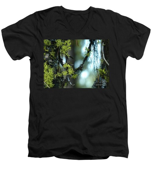 Mossy Playground Men's V-Neck T-Shirt