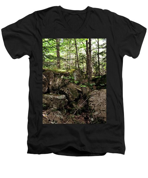 Mossy Rocks In The Forest Men's V-Neck T-Shirt