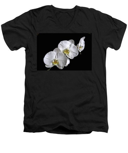 Moth Orchid Trio Men's V-Neck T-Shirt