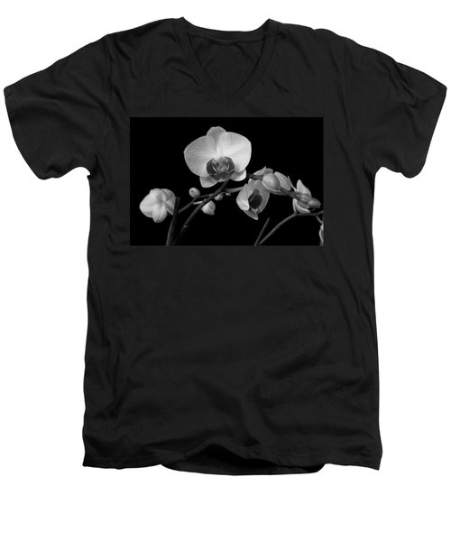Moth Orchids Men's V-Neck T-Shirt