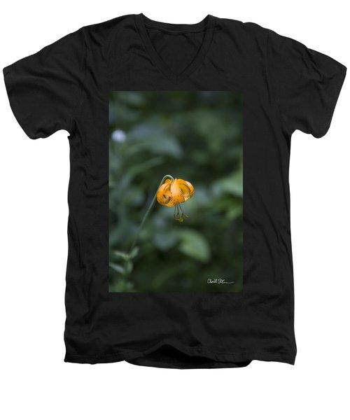 Mountain Flower Men's V-Neck T-Shirt