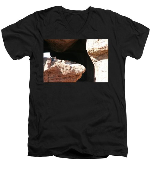 Men's V-Neck T-Shirt featuring the photograph Mountain Lion by David S Reynolds