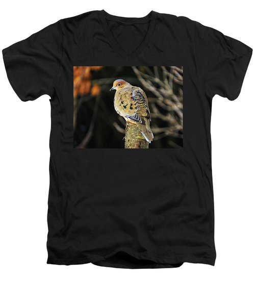 Mourning Dove On Post Men's V-Neck T-Shirt