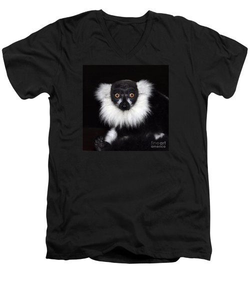 Men's V-Neck T-Shirt featuring the photograph Mr Lemur by Terri Waters