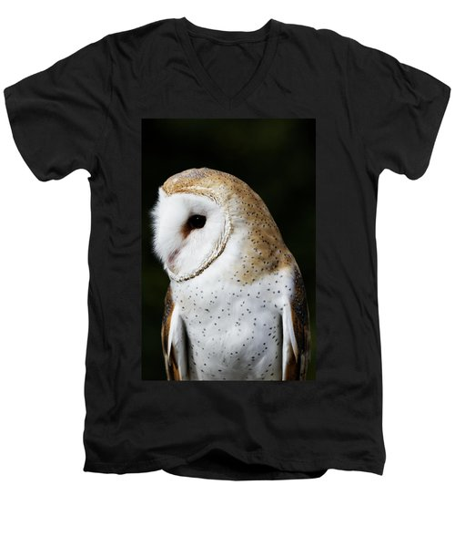 Mr Owl  Men's V-Neck T-Shirt