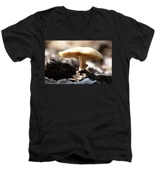 Mushroom Men's V-Neck T-Shirt