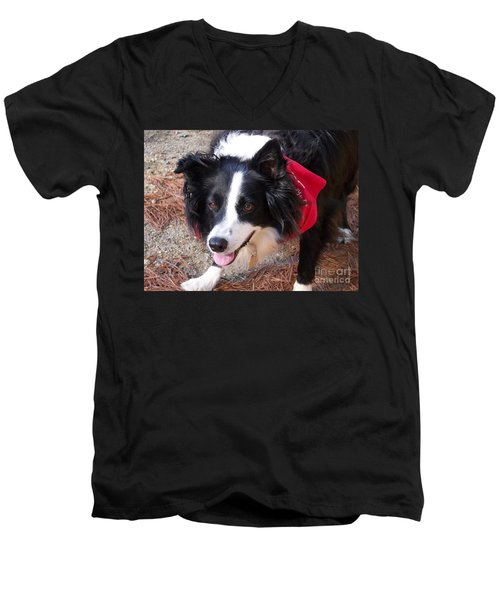 Men's V-Neck T-Shirt featuring the photograph Female Border Collie by Eunice Miller