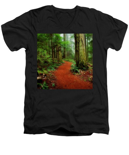 Mystical Trail Men's V-Neck T-Shirt