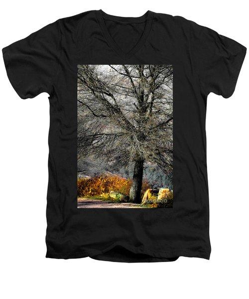 Naked For The Winter Men's V-Neck T-Shirt