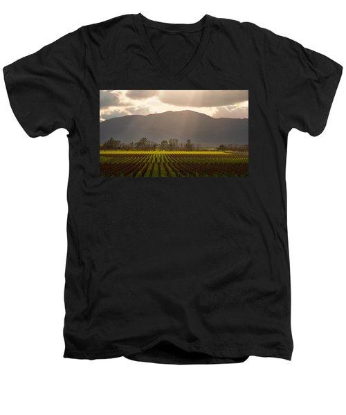 Napa Beauty Men's V-Neck T-Shirt