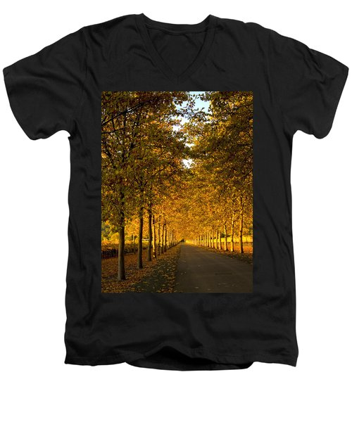 Napa Valley Fall Men's V-Neck T-Shirt