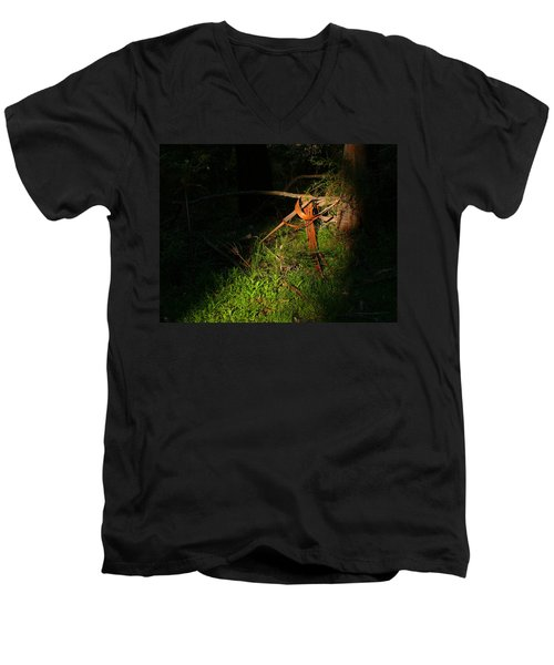 Men's V-Neck T-Shirt featuring the photograph Natural Bands 2 by Evelyn Tambour
