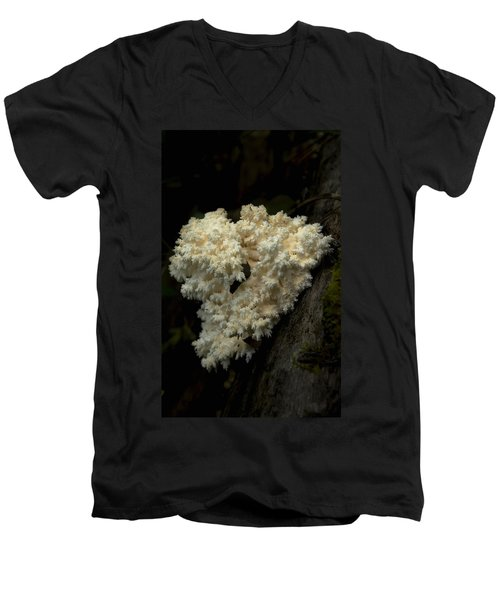 Natural Sculpture Men's V-Neck T-Shirt