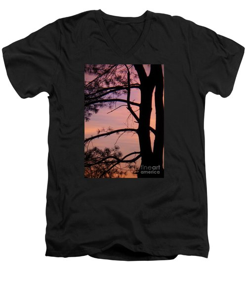 Nature Sunrise Men's V-Neck T-Shirt