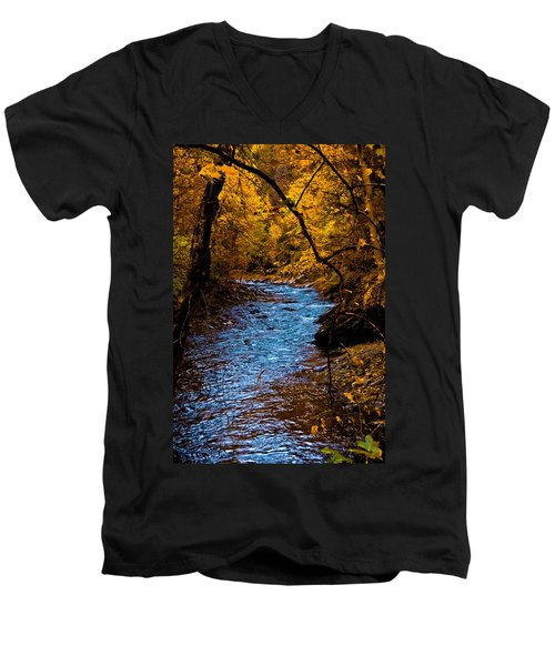 Natures Golden Secret Men's V-Neck T-Shirt