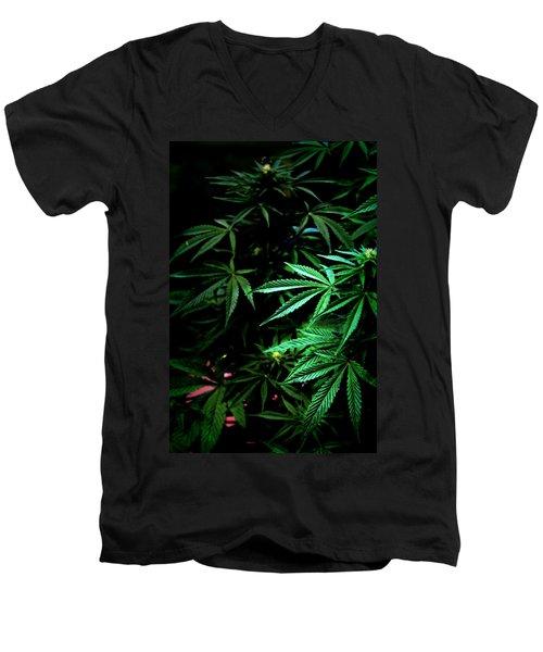 Nature's Medicine Men's V-Neck T-Shirt by Jeanette C Landstrom