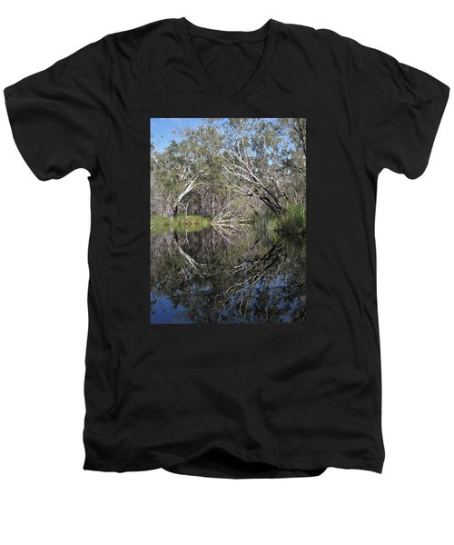 Natures Portal Men's V-Neck T-Shirt