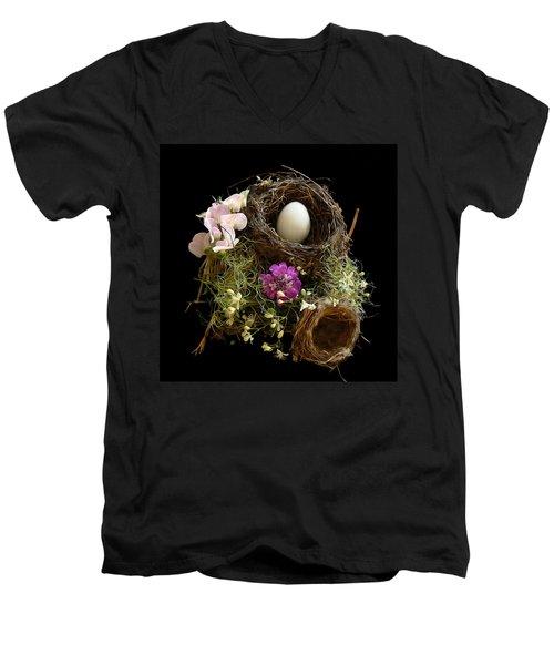 Nest Egg Men's V-Neck T-Shirt