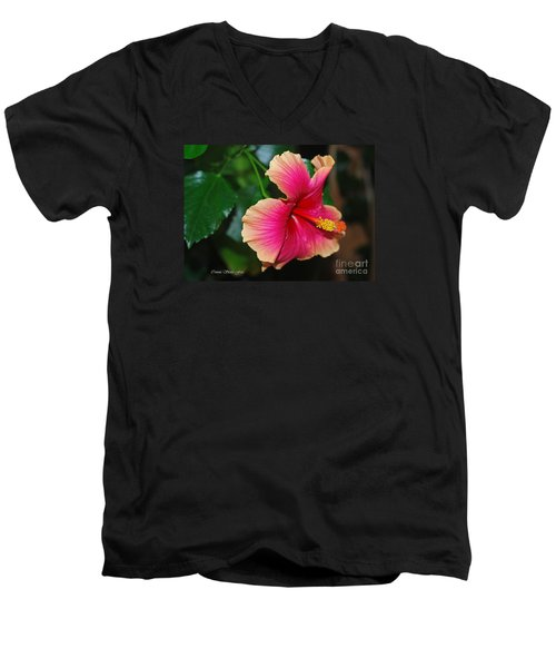 New Every Morning - Hibiscus Men's V-Neck T-Shirt by Connie Fox