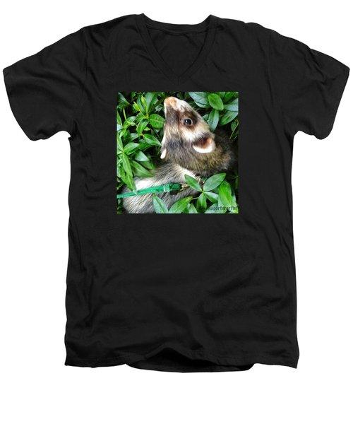 Nicky In The Garden Men's V-Neck T-Shirt