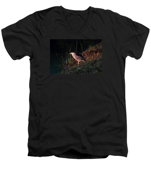 Night Heron  Men's V-Neck T-Shirt by Duncan Selby