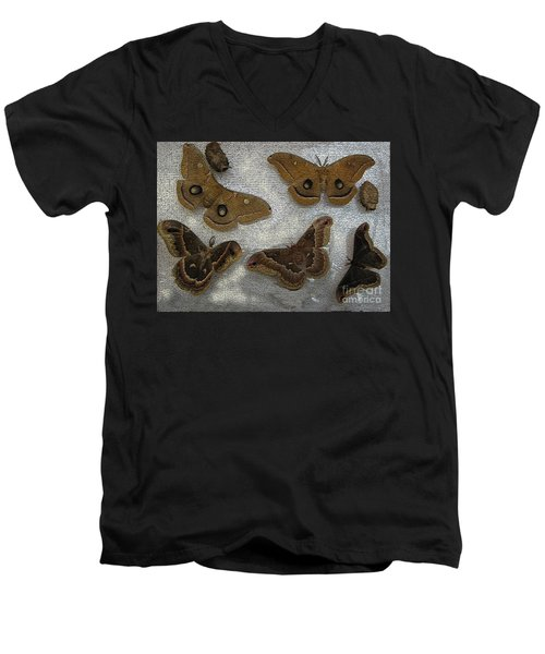 North American Large Moth Collection Men's V-Neck T-Shirt