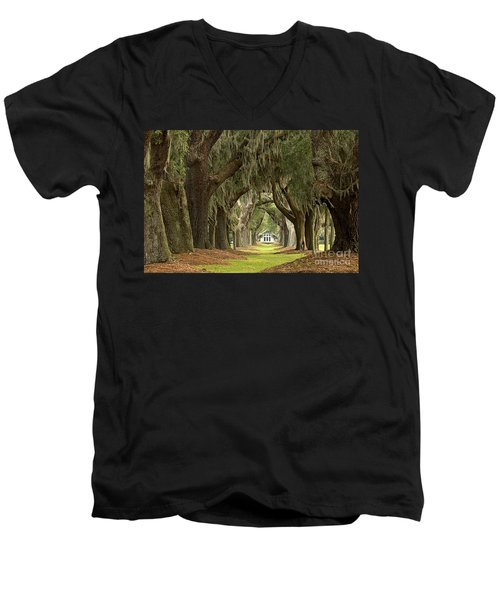 Oaks Of The Golden Isles Men's V-Neck T-Shirt