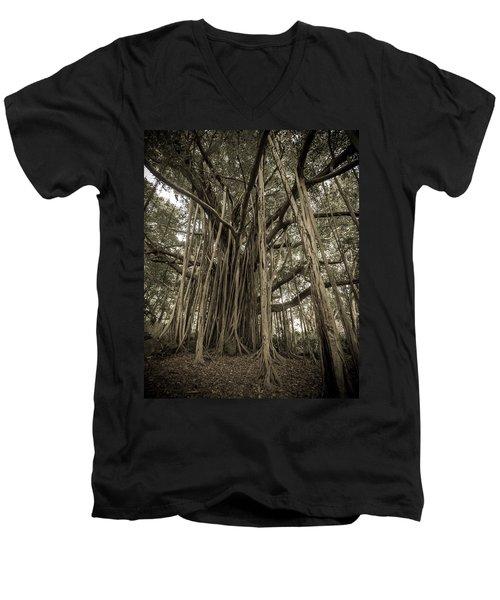 Old Banyan Tree Men's V-Neck T-Shirt