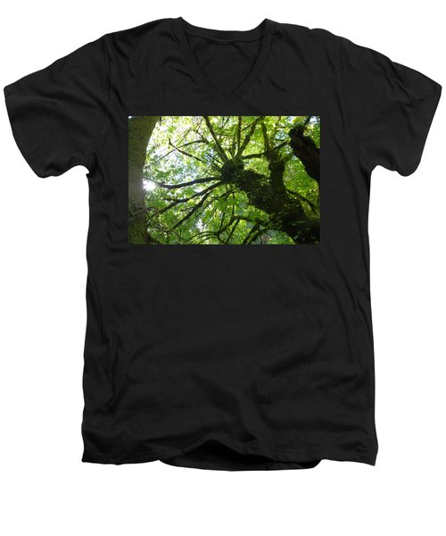 Old Growth Tree In Forest Men's V-Neck T-Shirt