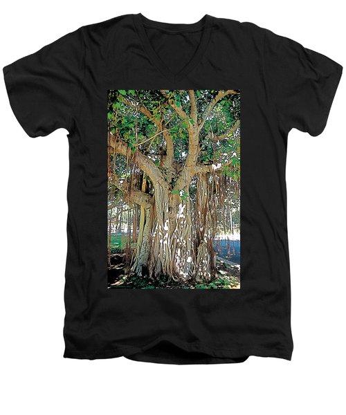 Old Soul Men's V-Neck T-Shirt by Terry Reynoldson