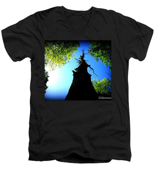 Old Trees Men's V-Neck T-Shirt