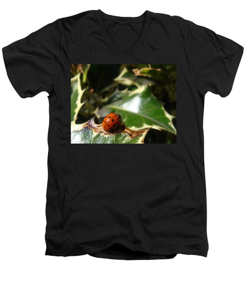 Men's V-Neck T-Shirt featuring the photograph On The Edge by Cheryl Hoyle