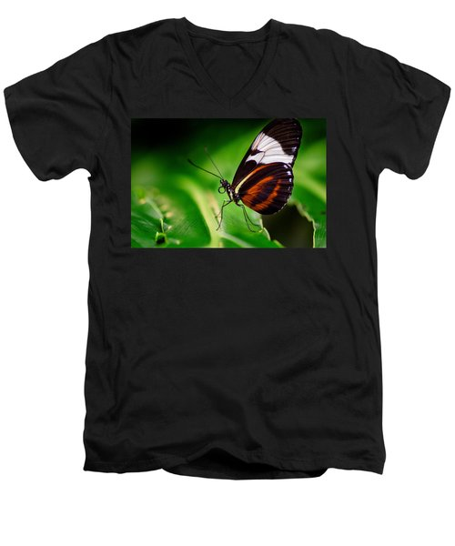 On The Wings Of Beauty Men's V-Neck T-Shirt
