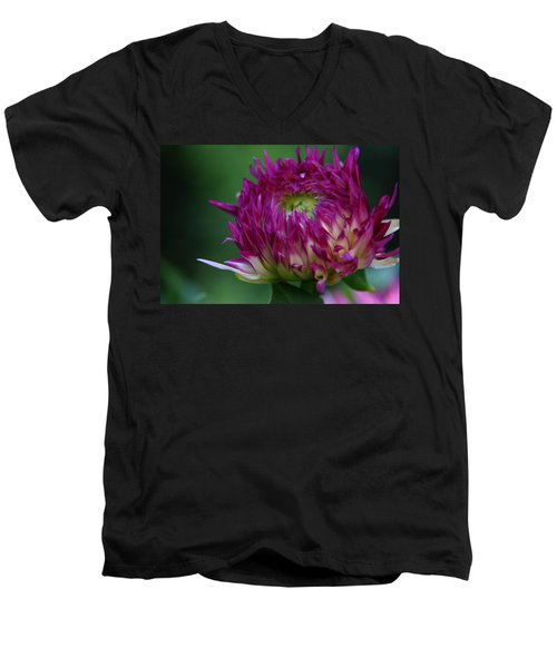 Men's V-Neck T-Shirt featuring the photograph Opening Day by Denyse Duhaime