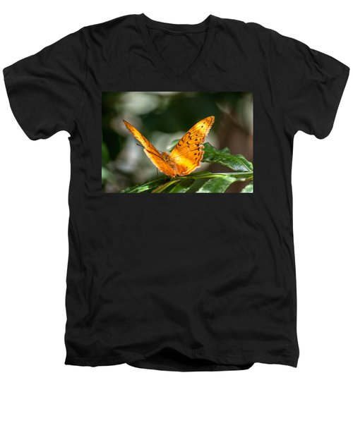 Orange Butterfly Men's V-Neck T-Shirt