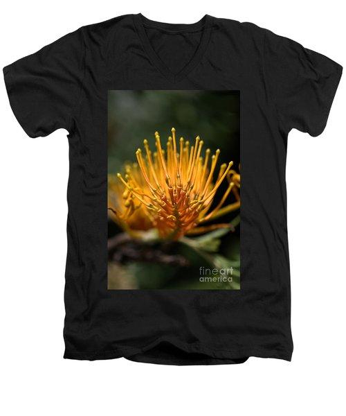 Orange Grevillea Men's V-Neck T-Shirt