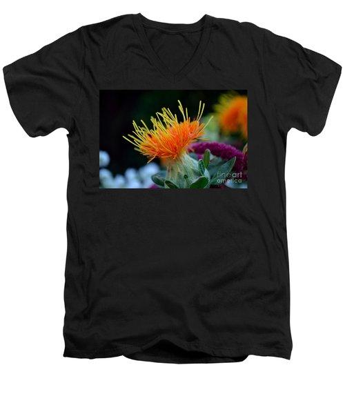 Orange Safflower Men's V-Neck T-Shirt