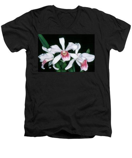 Orchid 10 Men's V-Neck T-Shirt