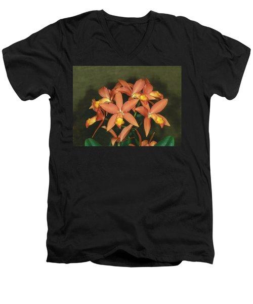 Orchid 3 Men's V-Neck T-Shirt
