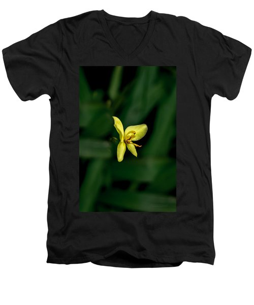 Orchid Suspense  Men's V-Neck T-Shirt