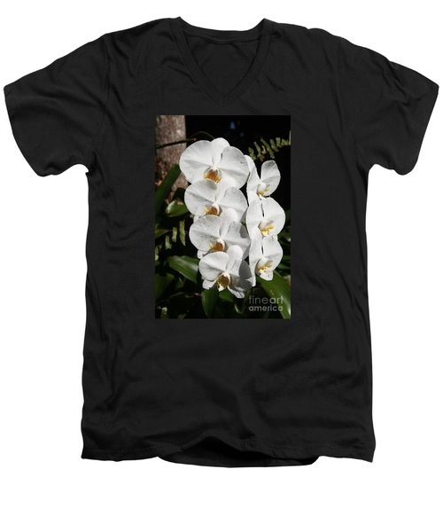 Orchids Anna Men's V-Neck T-Shirt by The Art of Alice Terrill