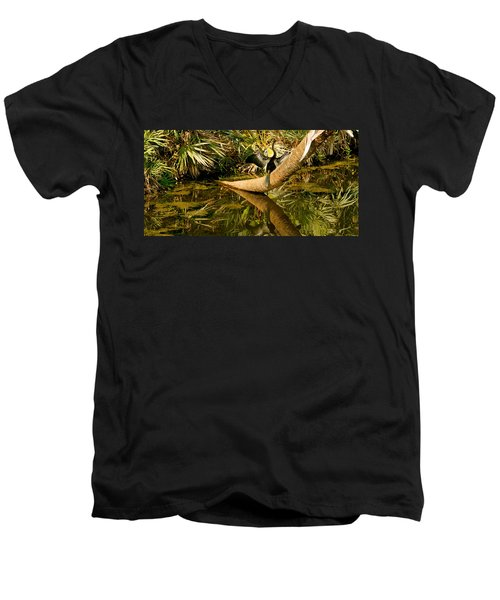 Oriental Darter Anhinga Melanogaster Men's V-Neck T-Shirt by Panoramic Images