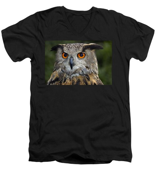 Owl Bubo Bubo Portrait Men's V-Neck T-Shirt