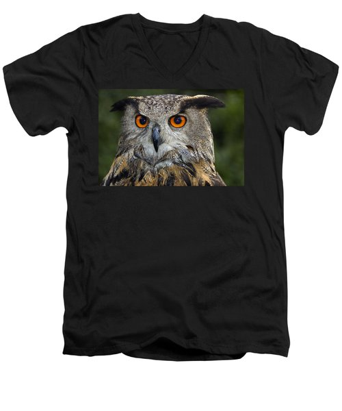 Owl Bubo Bubo Portrait Men's V-Neck T-Shirt